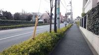 周辺環境:前面道路